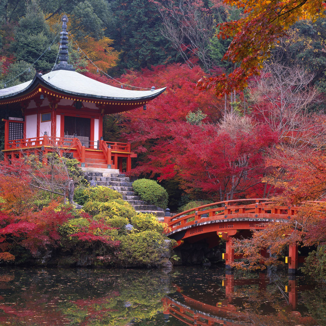 Tokyo and Kyoto Tour 10D/9N