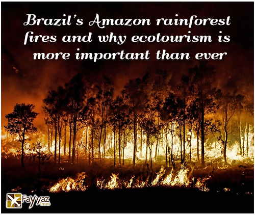brazils-amazon-rainforest-fires-and-why-ecotourism-is-more-important-than-ever-main-image